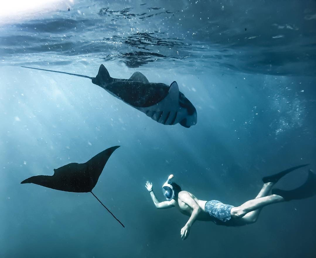 Manta Point - Snorkeling Nusa Penida